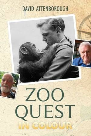 Watch Zoo Quest in Colour Online