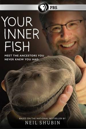 Watch Your Inner Fish Online