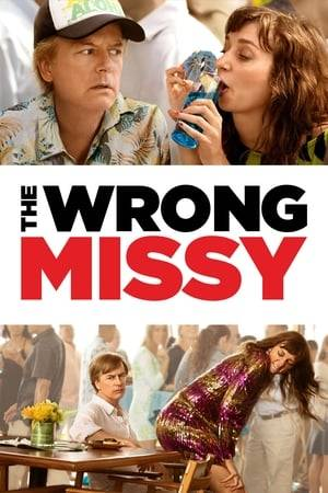 Watch The Wrong Missy Online