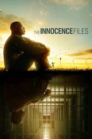 Watch The Innocence Files Online