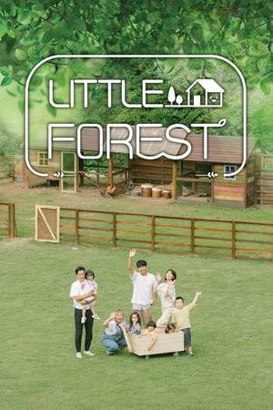 Watch Little Forest Online