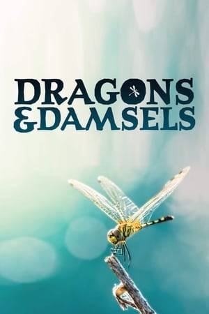 Watch Dragons and Damsels Online