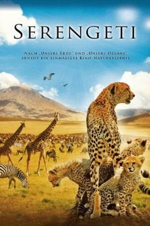 Watch Serengeti Online