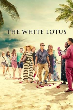 Watch The White Lotus Online