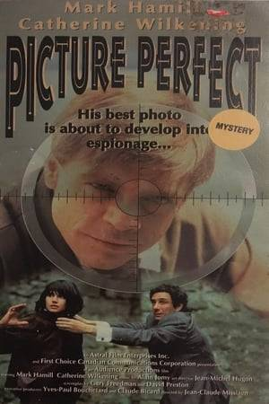Watch Picture Perfect Online