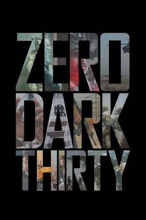 Watch Zero Dark Thirty Online