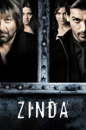 Watch Zinda Online