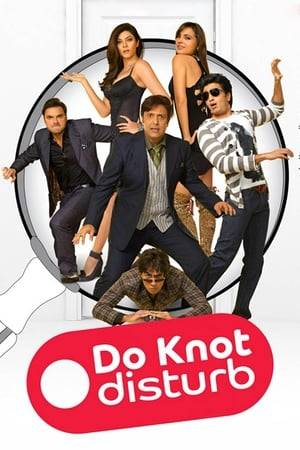Watch Do Knot Disturb Online
